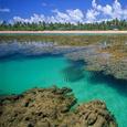Vacaciones en Ilha de Boipeba