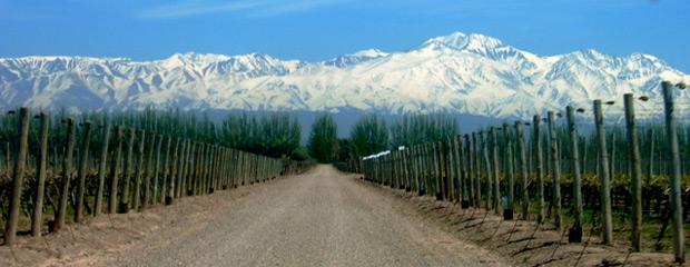 Paquetes de Viajes a Mendoza