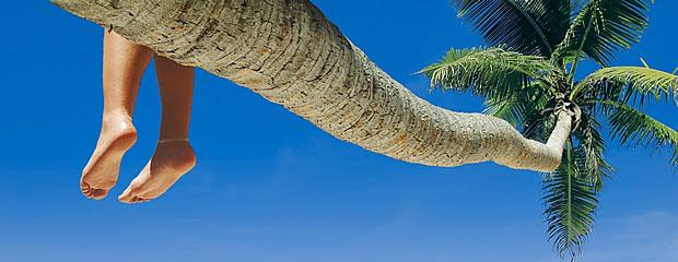 Turismo a Punta Cana en Enero 2014